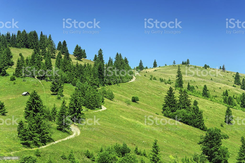 Long winding road on the mountain royalty-free stock photo