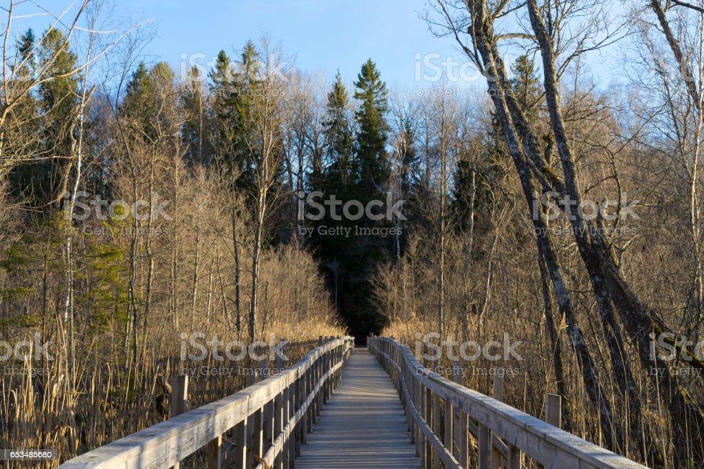 Long wooden bridge in Sweden Scandinavia Europe stock photo