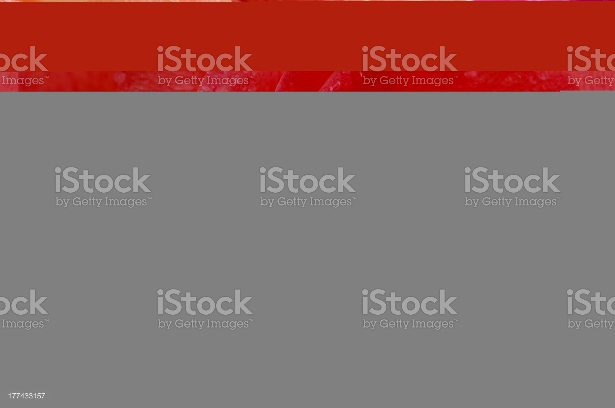 Longhorn Personal Care royalty-free stock photo