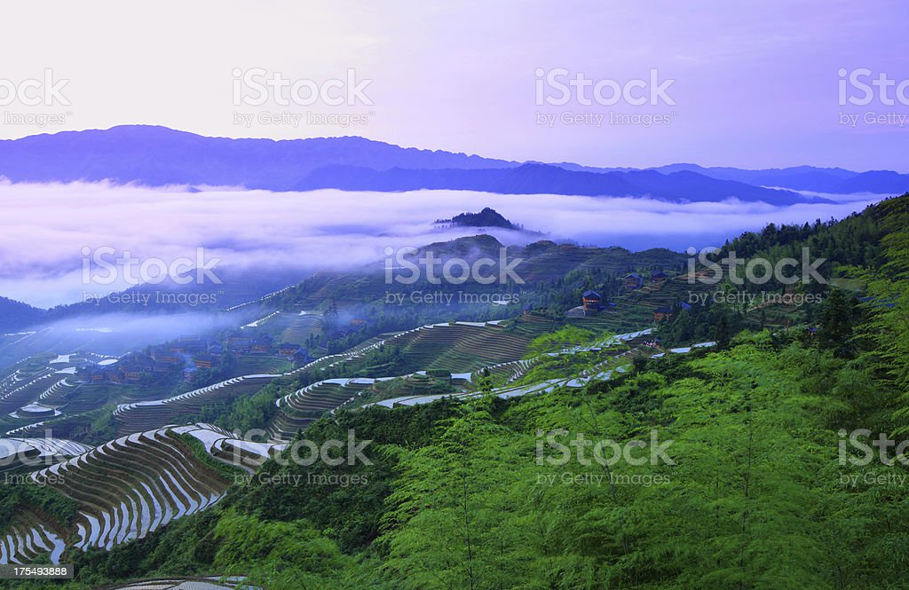 longji terraced fields royalty-free stock photo