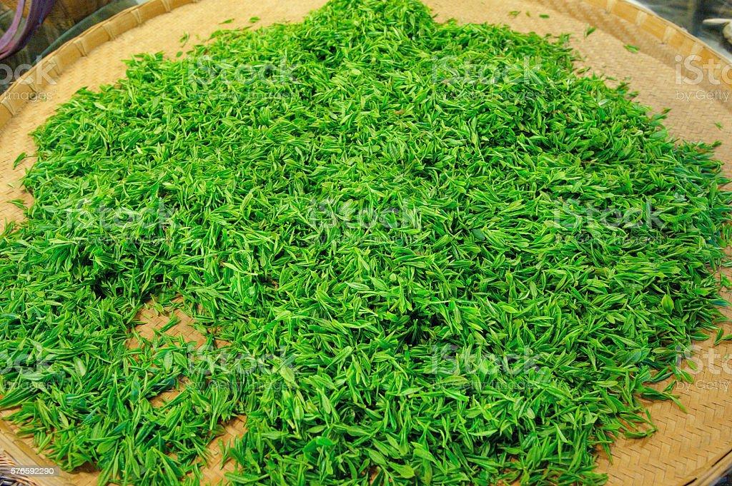 Longjing tea harvest stock photo