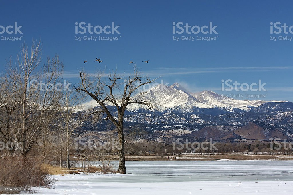 Longs Peak from McIntosh Lake in the Winter stock photo