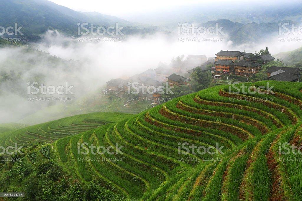 Longsheng terraced stock photo