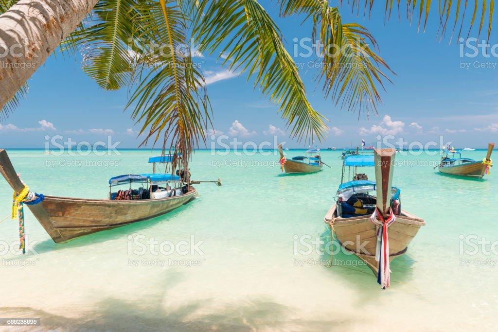 Longtail Boats, Phi Phi Islands, Thailand stock photo