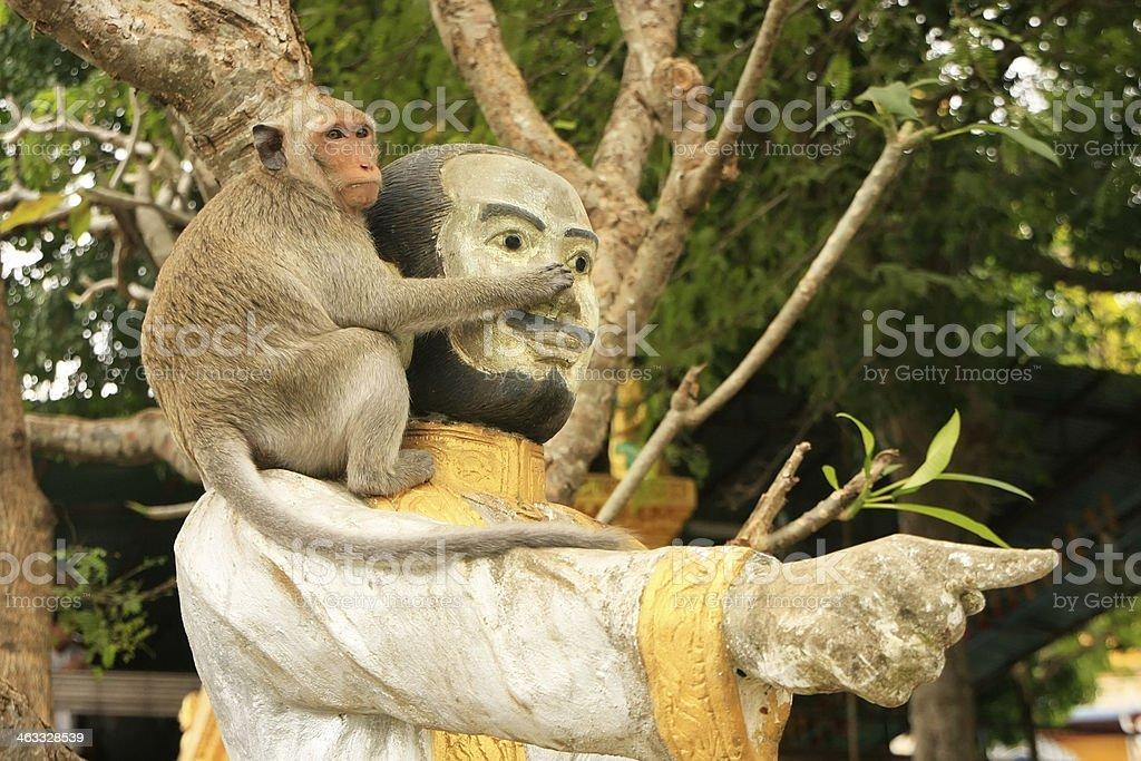 Long-tailed macaque playing at Phnom Sampeau, Battambang, Cambodia stock photo
