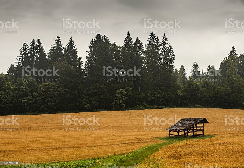 Lonley wooden structure stock photo