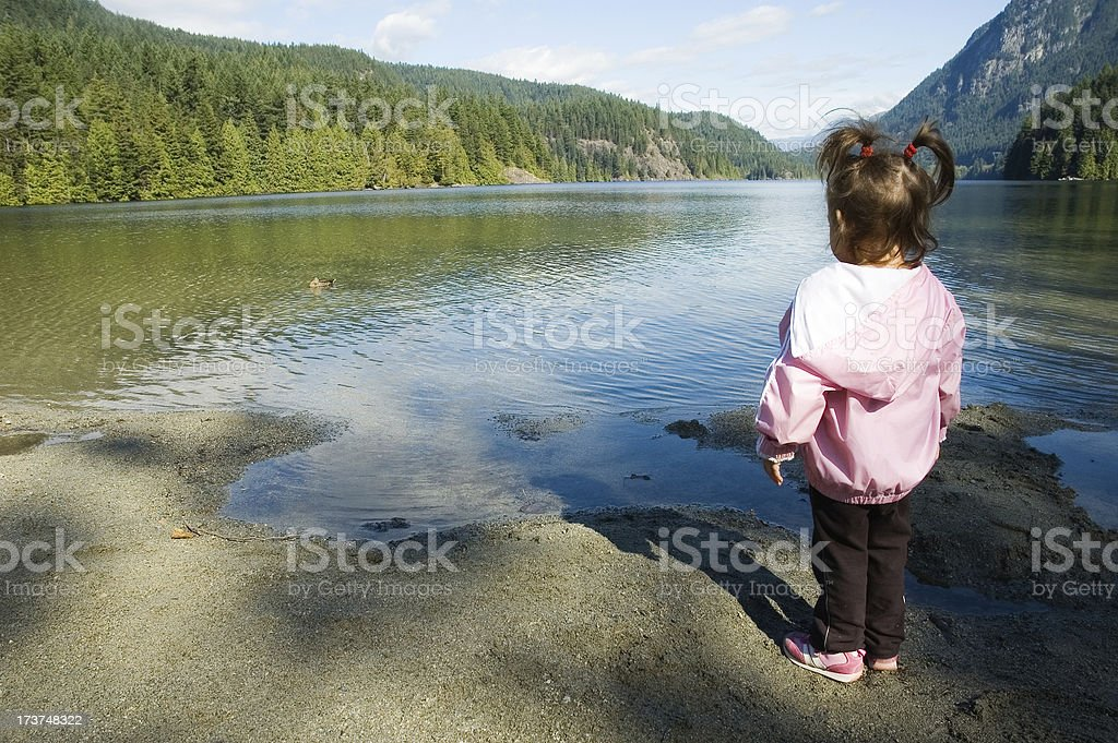 Look, a Ducky! royalty-free stock photo