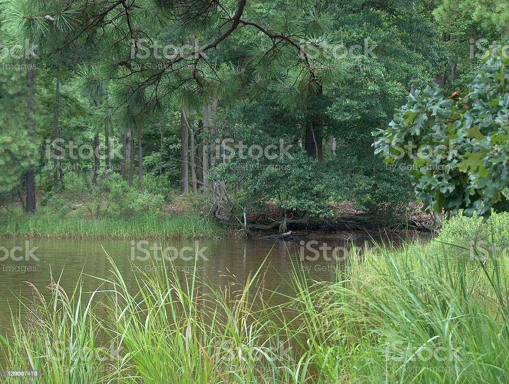 Look Across The Water royalty-free stock photo