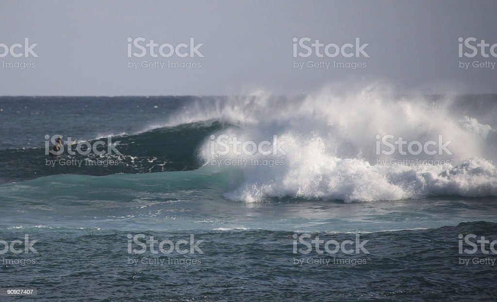 look at the big wave barrel royalty-free stock photo