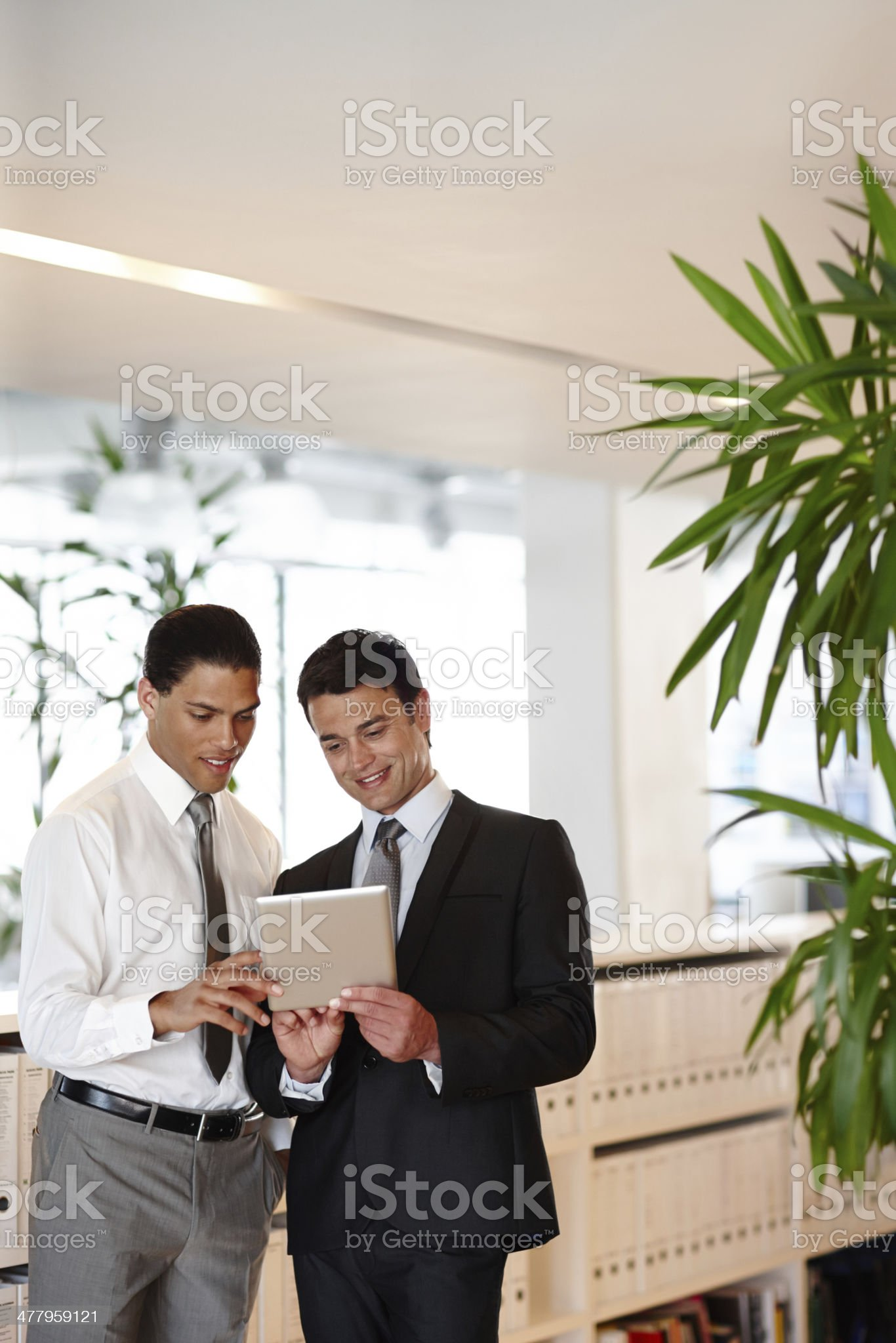Look at these features! royalty-free stock photo