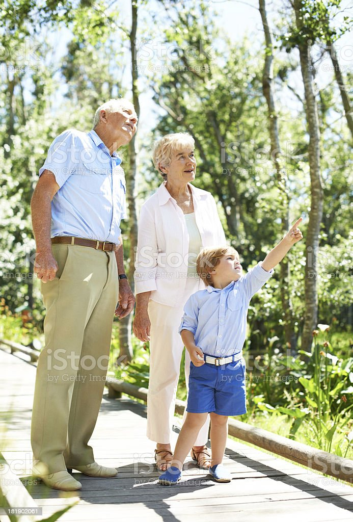 Look up there! royalty-free stock photo