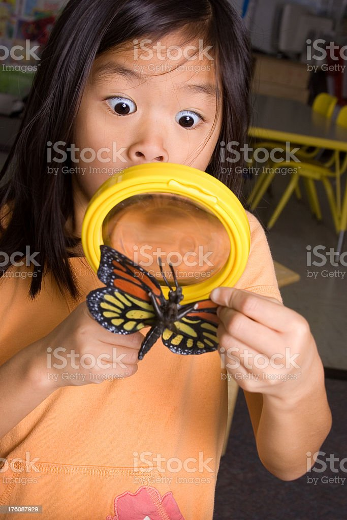 Looking at butterfly through magnifying glass royalty-free stock photo