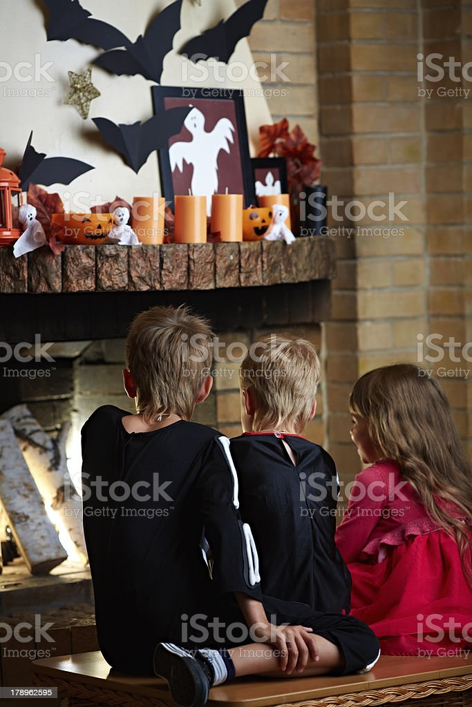 Looking at fire royalty-free stock photo