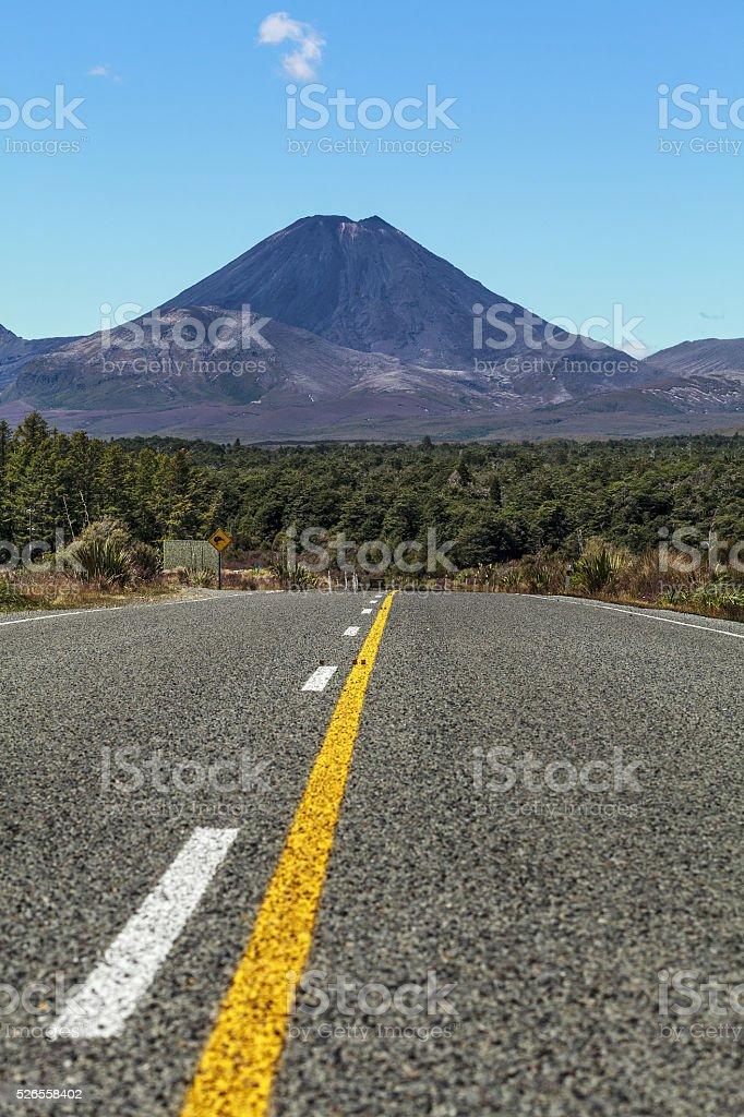 looking at Mt Ngauruhoe stock photo