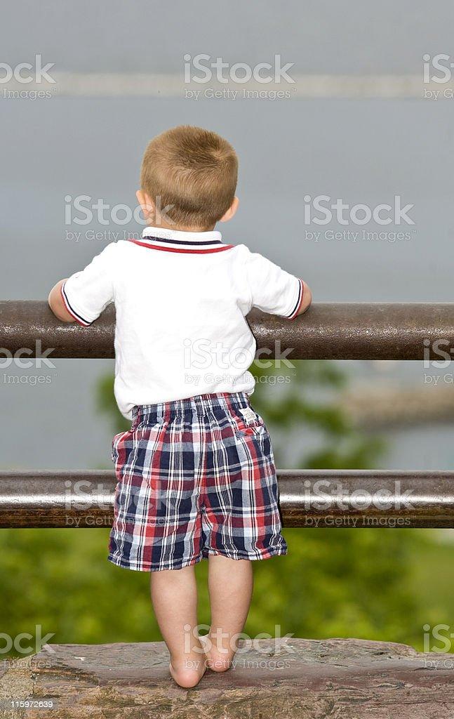 Looking at the Lake royalty-free stock photo