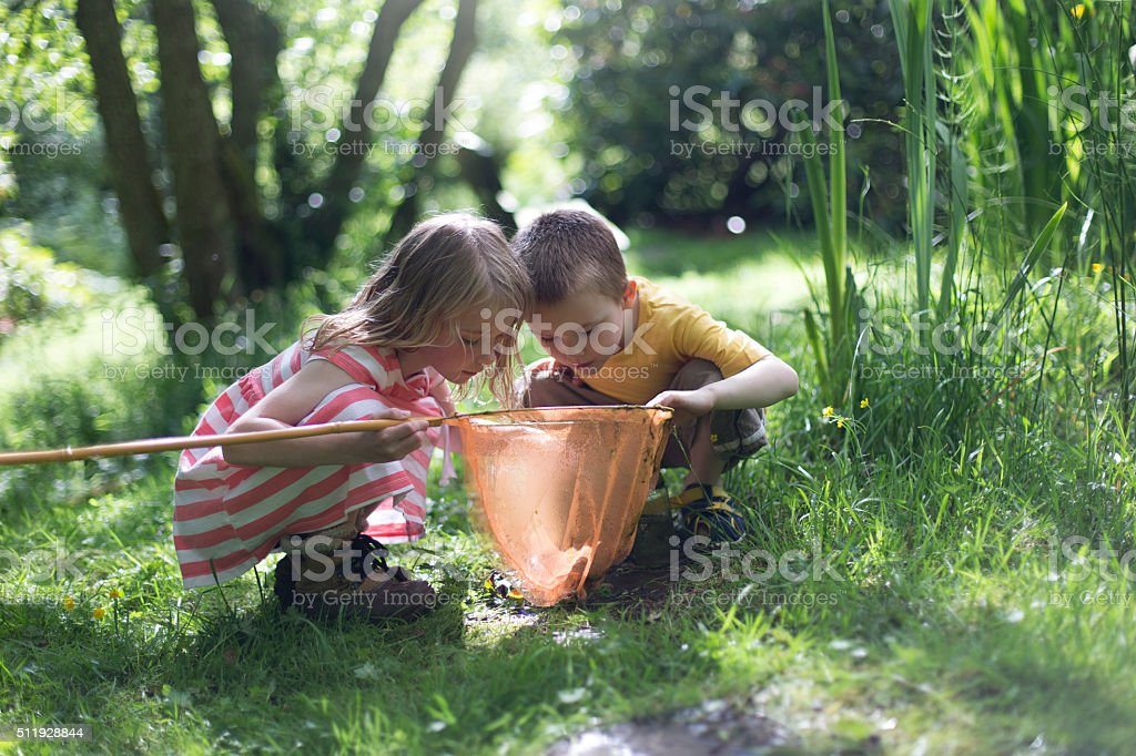 Looking at the pond life royalty-free stock photo