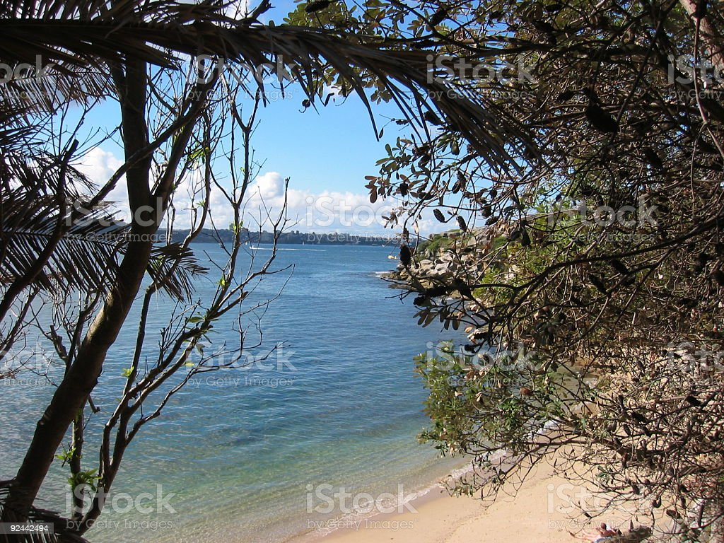 Looking at the sea through trees royalty-free stock photo