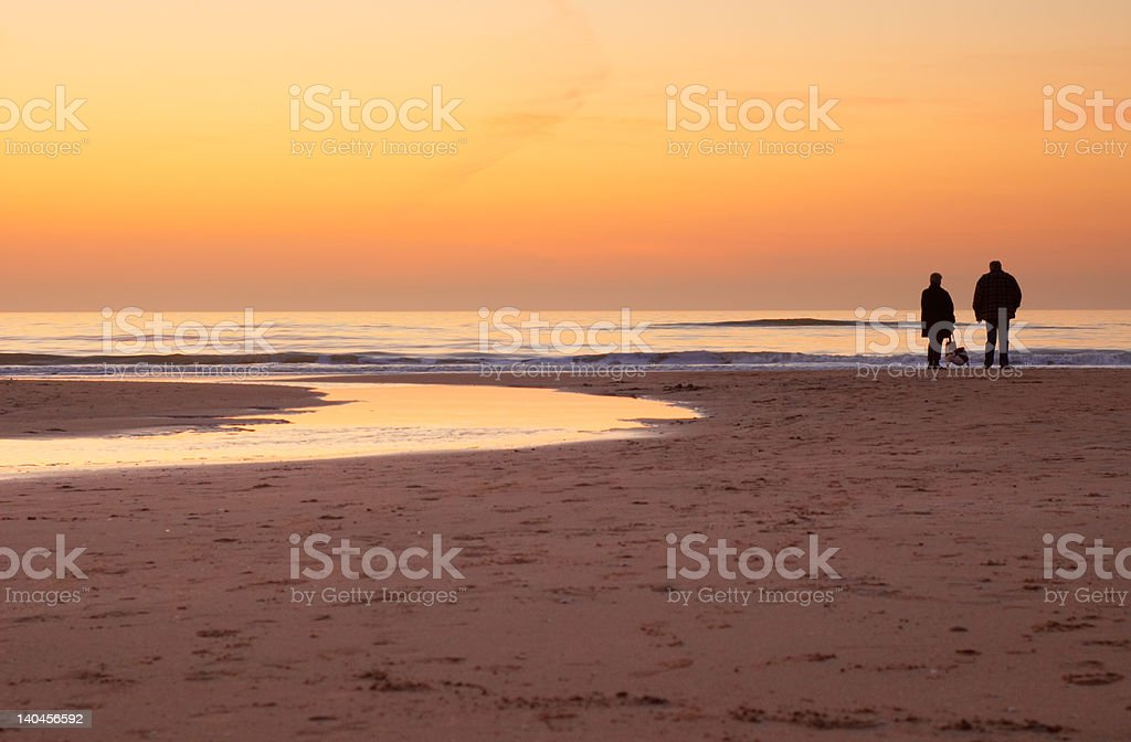 looking at the sunset royalty-free stock photo