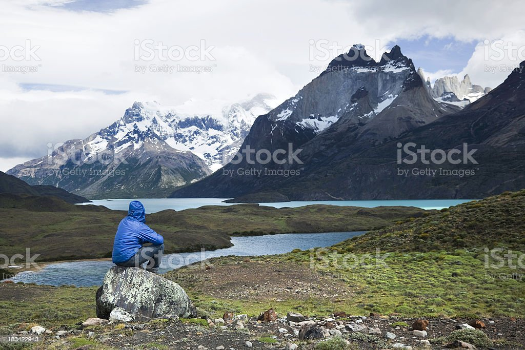 Looking at Torres del Paine stock photo