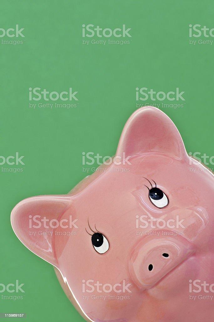 looking at you royalty-free stock photo