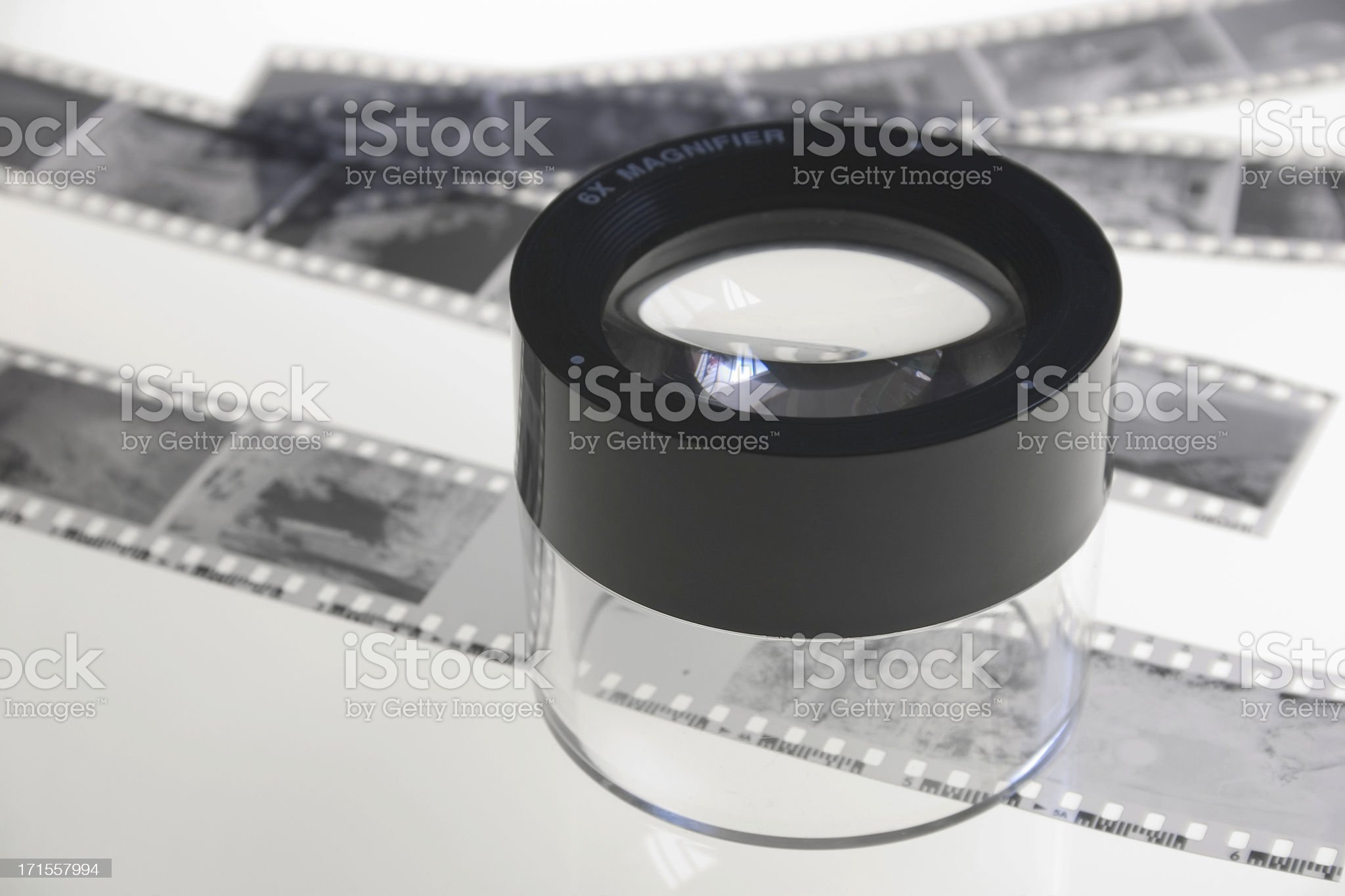 Looking Closely royalty-free stock photo