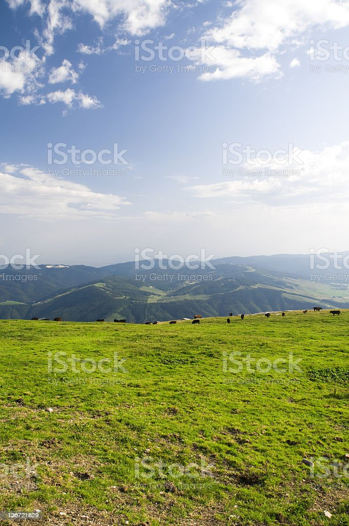 Looking down from the mountain royalty-free stock photo