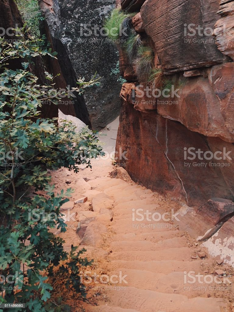 Looking Down Natural Stairs royalty-free stock photo