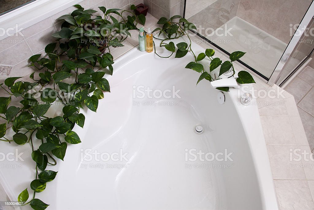 Looking down on a  Garden Tub stock photo
