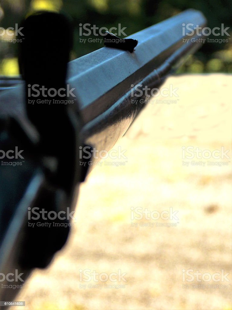 Looking Down the Gun Barrel of Vintage Antique Long Rifle stock photo