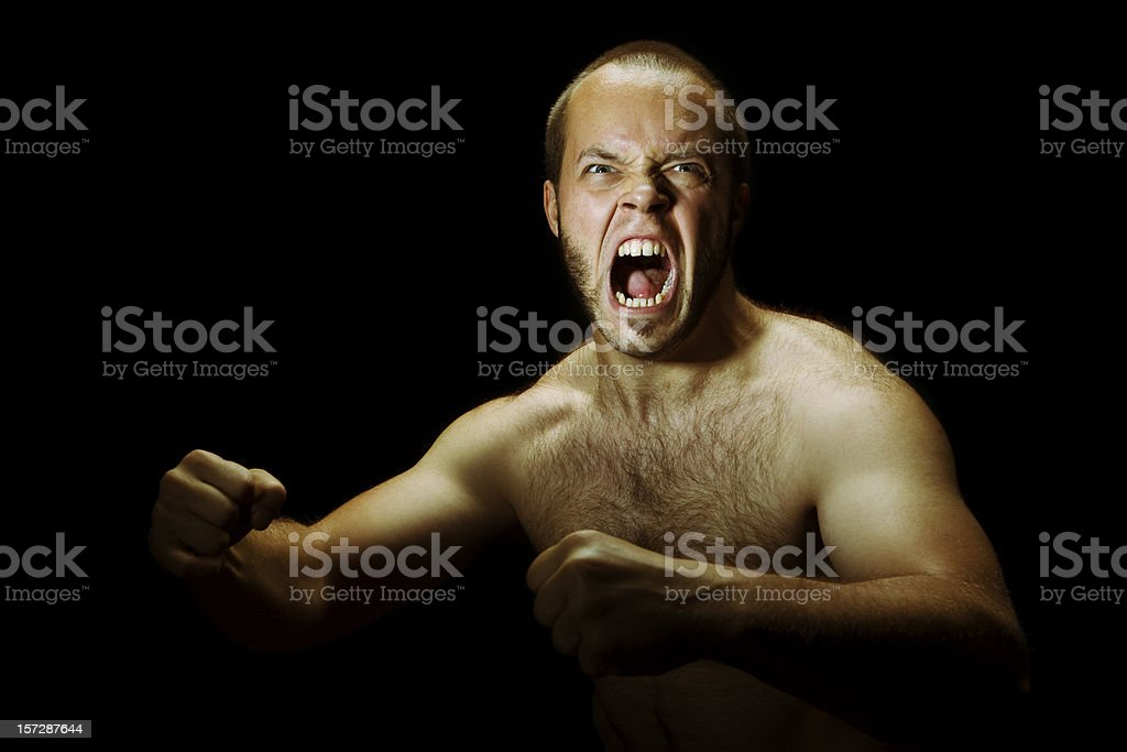 Looking for a fight. royalty-free stock photo