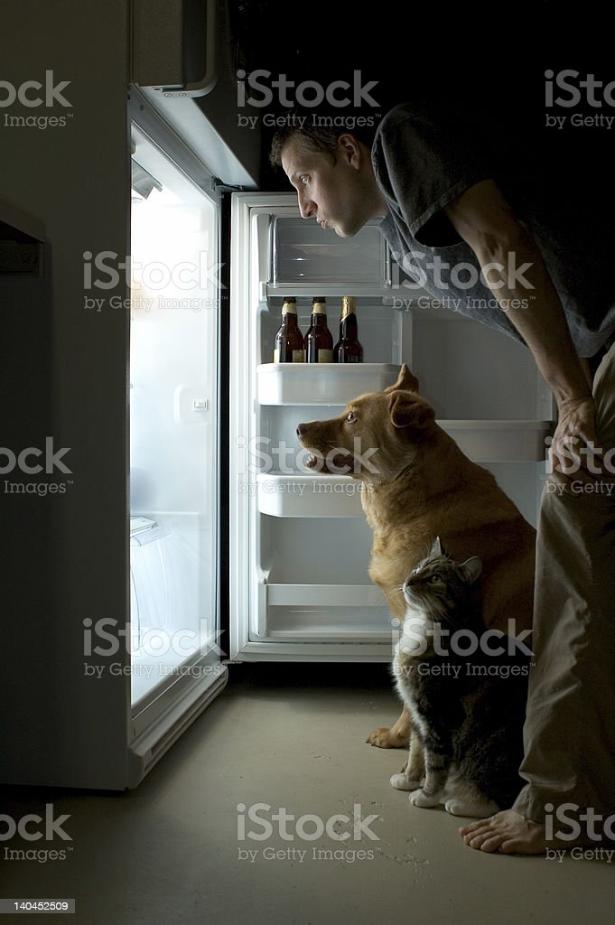 Looking for food stock photo