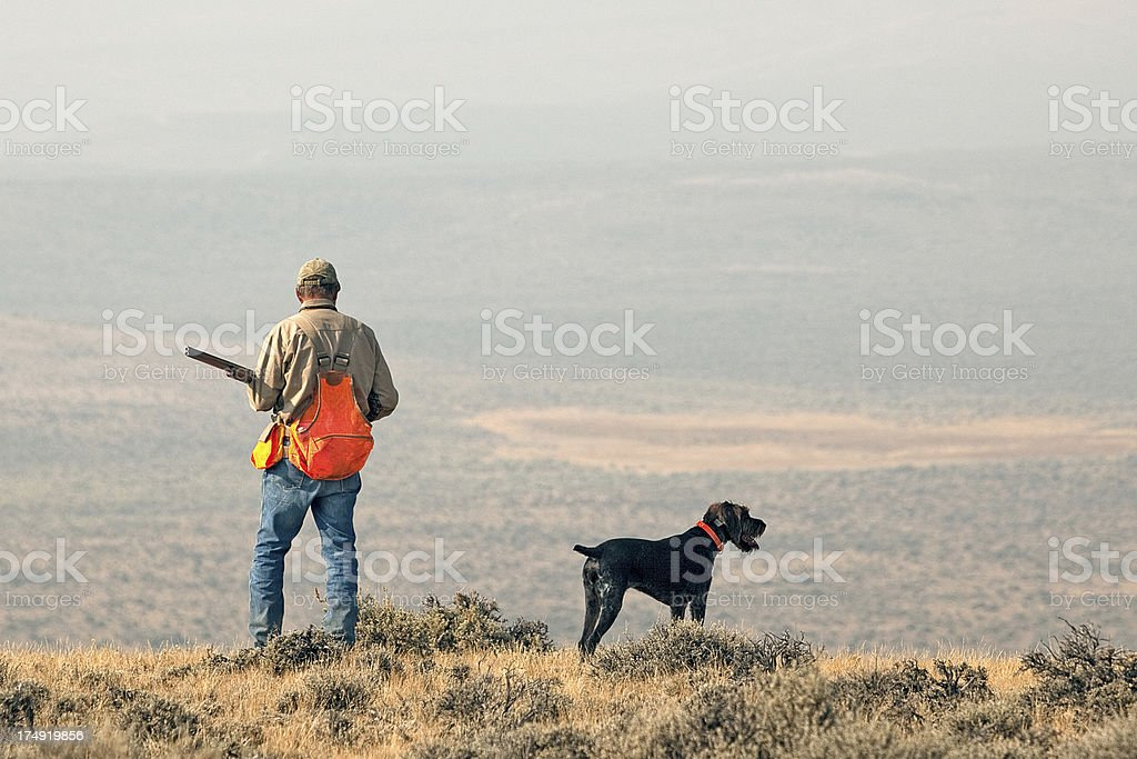 Looking for Game stock photo
