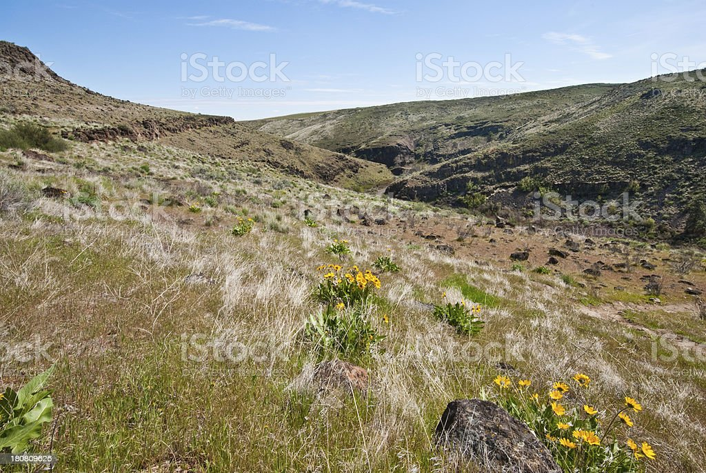 Looking into Cowiche Canyon royalty-free stock photo