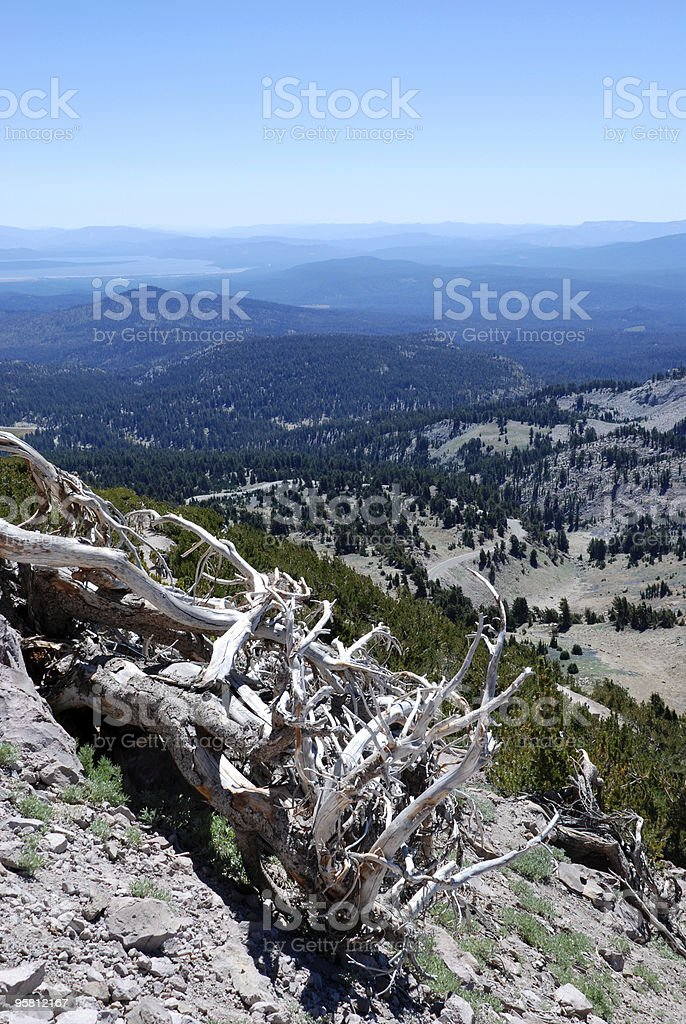 Looking out from Lassen Peak royalty-free stock photo