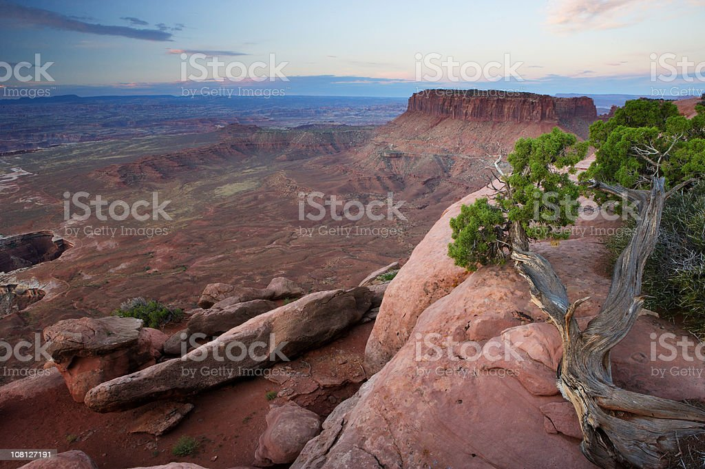 Looking Out Over Desert Canyon stock photo