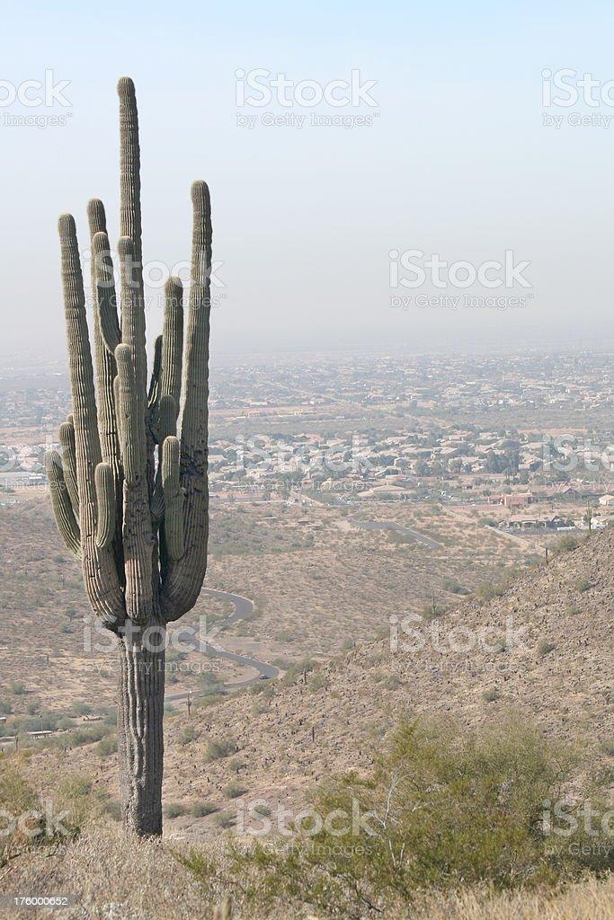 Looking over North Phoenix stock photo