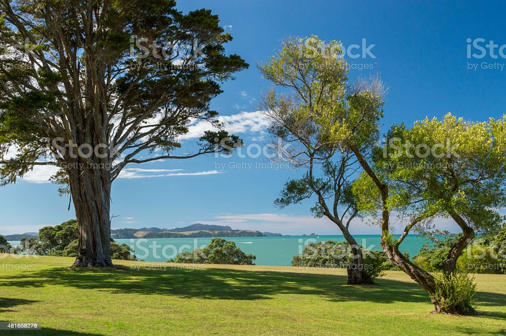Looking over the Bay of Islands, New Zealand stock photo