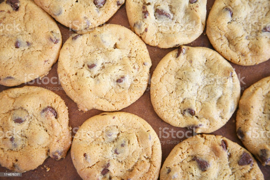 Looking Straight Down on Tray of Cooked Chocolate Chip Cookies royalty-free stock photo