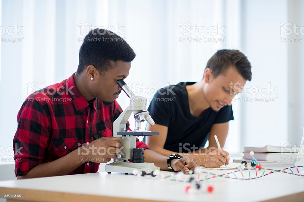 Looking Through a Microscope stock photo