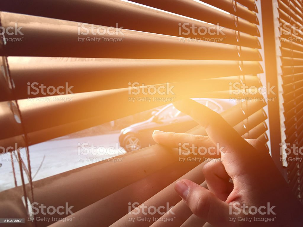 Looking through the blinds stock photo