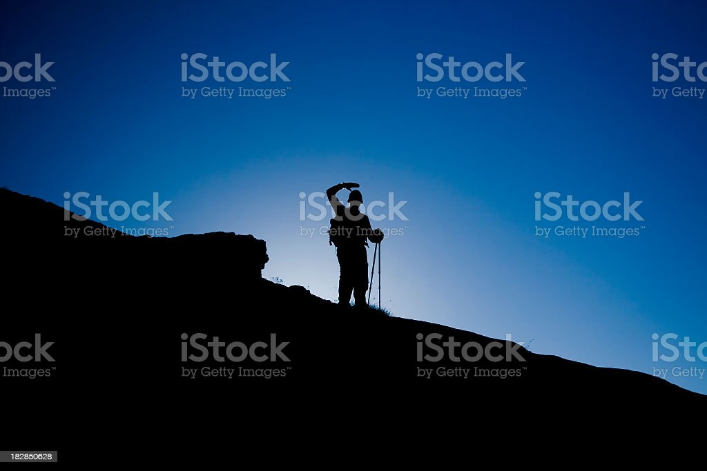Looking towards the top royalty-free stock photo