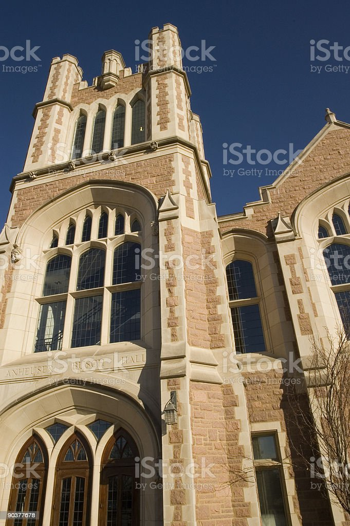 Looking Up at the Front of a Stone Building royalty-free stock photo