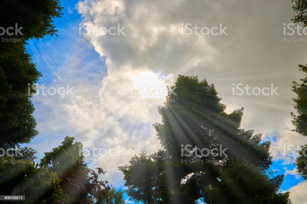 Looking up at the sky and the clouds and light coming through stock photo