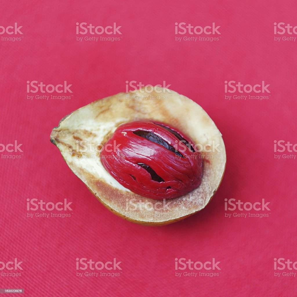 Looking upon a nutmag kernel on a red napkin stock photo