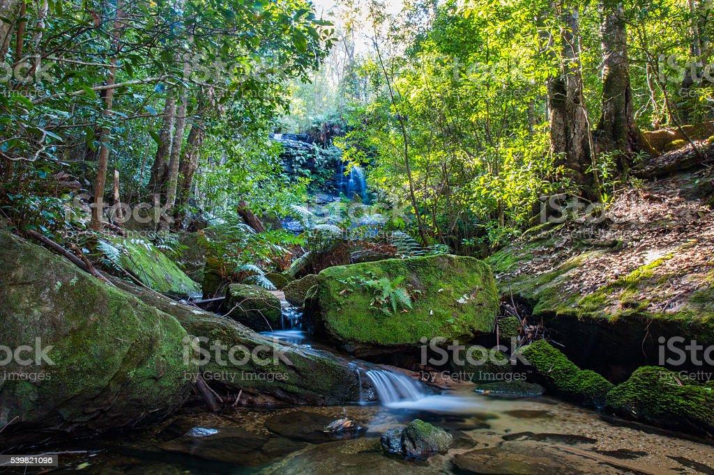 Looking Upstream stock photo