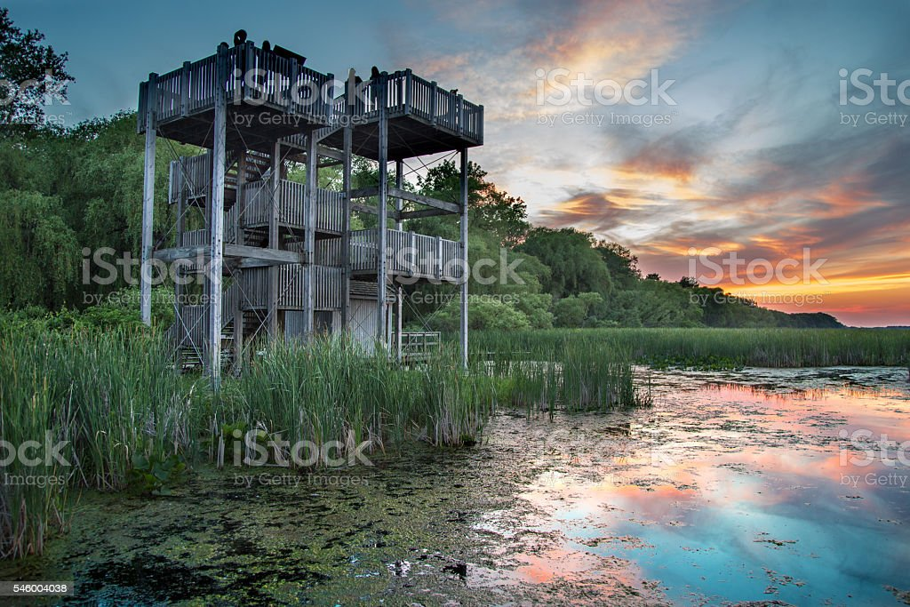 Lookout Tower at the Marsh Boardwalk stock photo