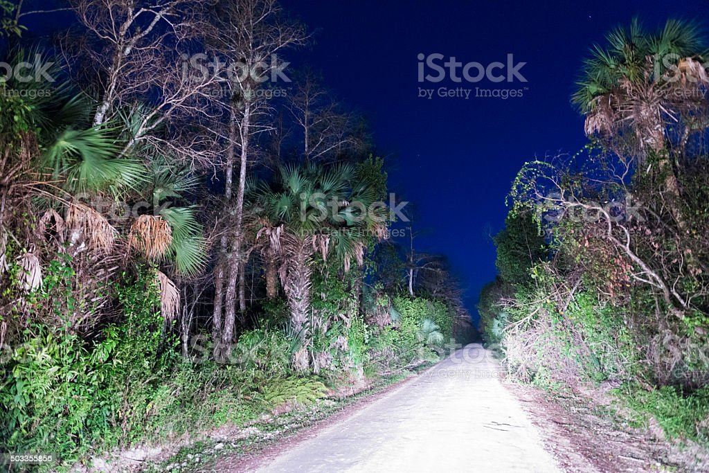 Loop Road Big Cypress National Park Scenic Drive in Everglades stock photo