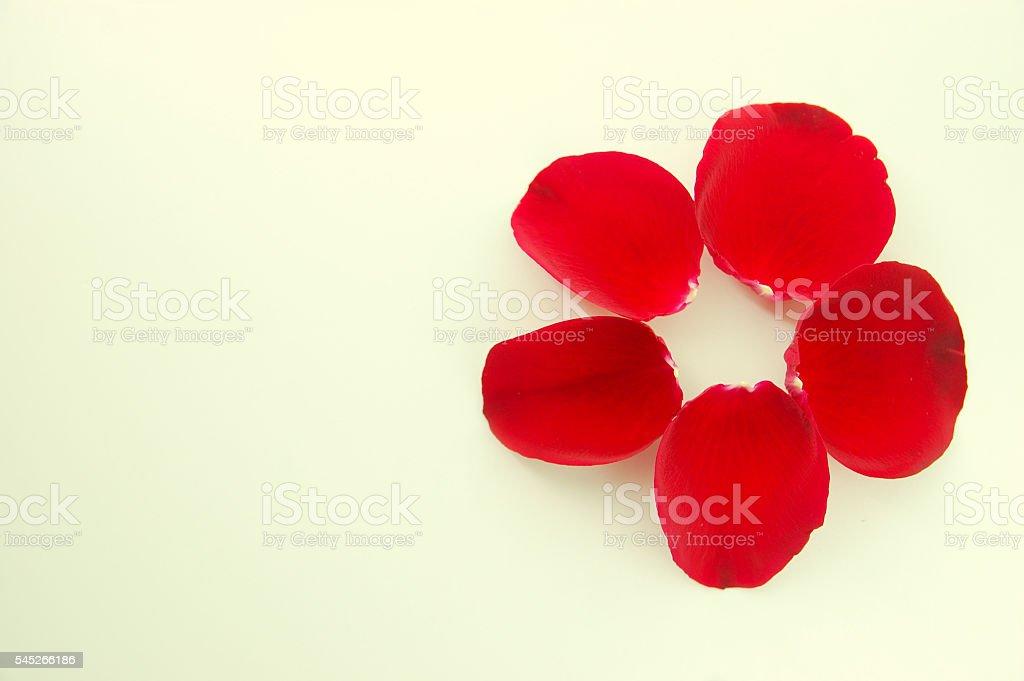 Loose red rose petals shaped into a flower foto de stock libre de derechos
