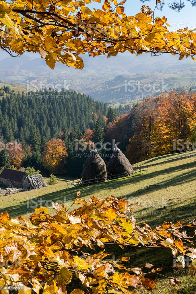 Loose stacked hay in the autumn mountain landscape stock photo