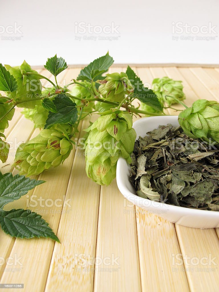 Loose tea with hops royalty-free stock photo